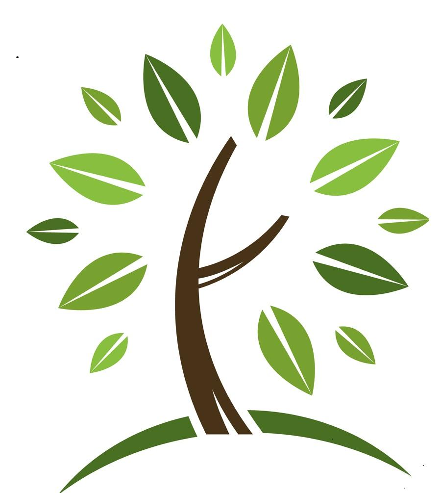 Health/Wellness Website
